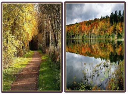 عکسهای عکسهای زیبا و جدید از فصل پاییز